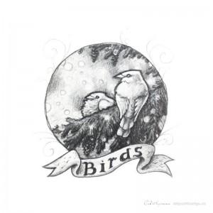 DS1 Birds
