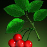 Замес «Ботаническая иллюстрация» *
